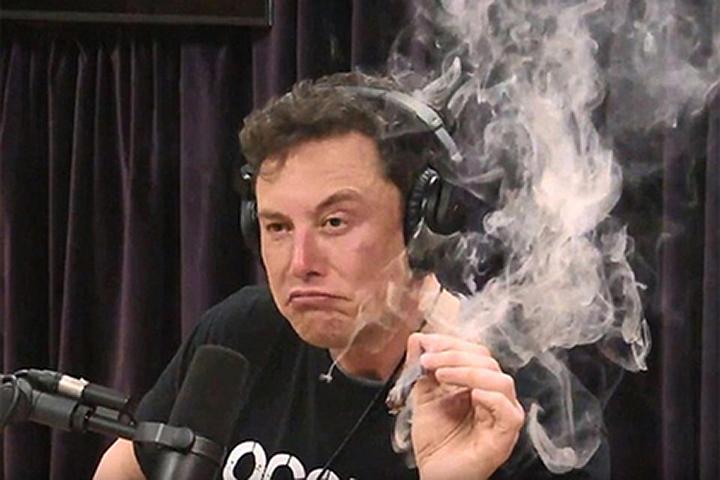 Кто курит марихуану хэмп порошок конопли