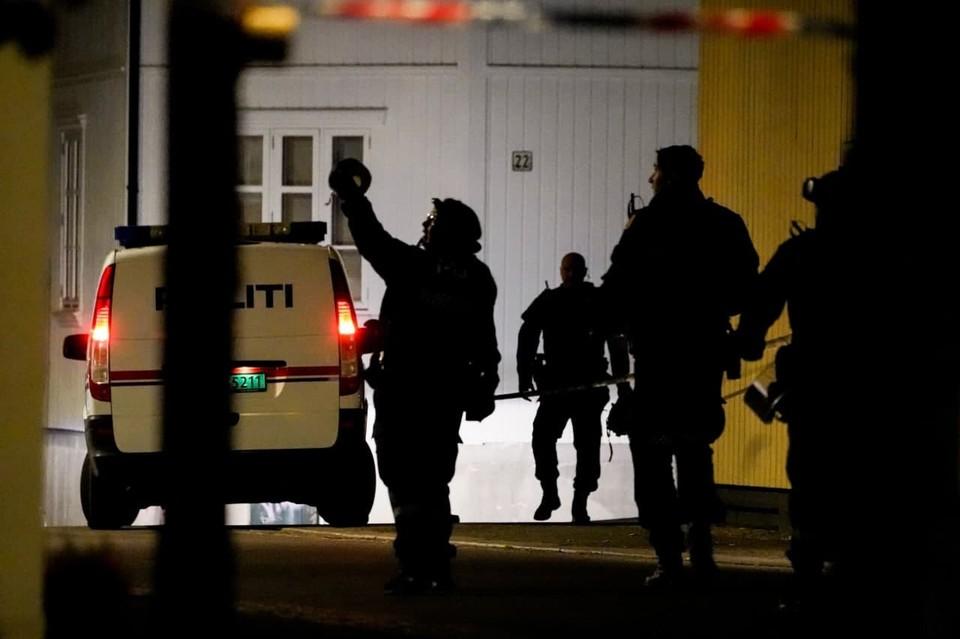 Теракт в Норвегии: несколько человек убито и ранено выстрелами из лука